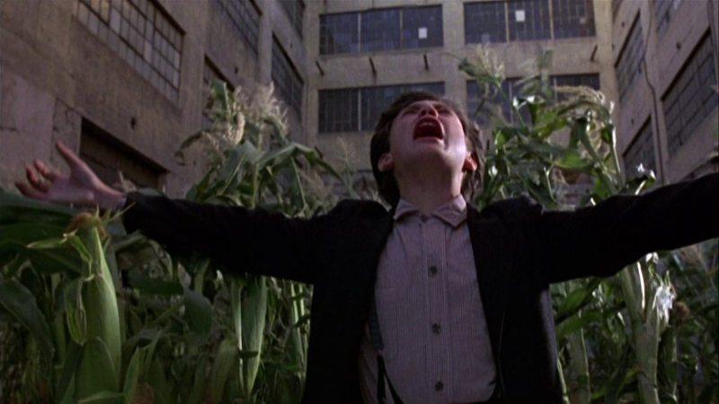 Los chicos del maíz 3: La cosecha urbana